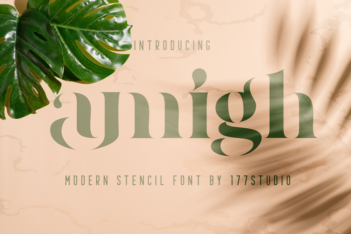 amigh Font poster