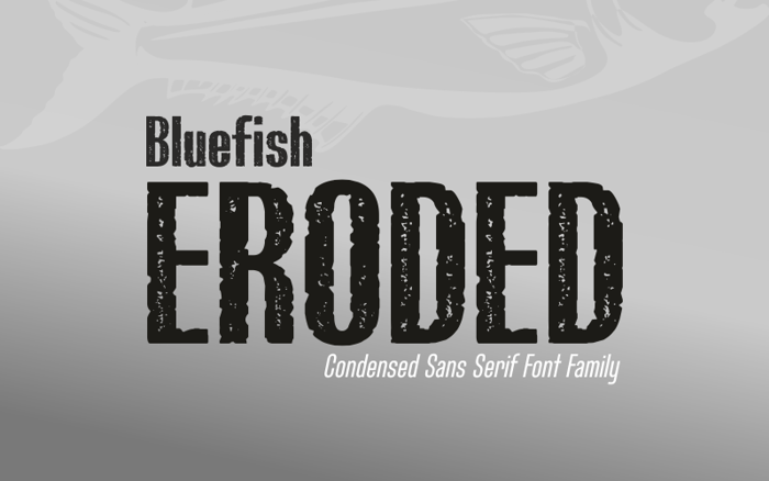 Bluefish_ERODED DEMO Font poster