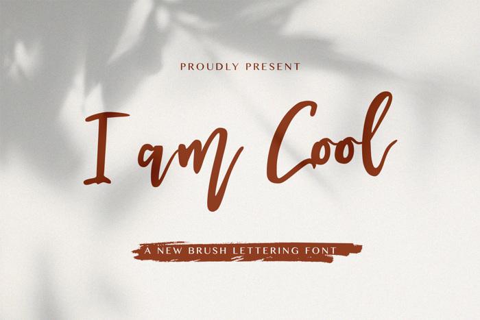 I am Cool Font poster