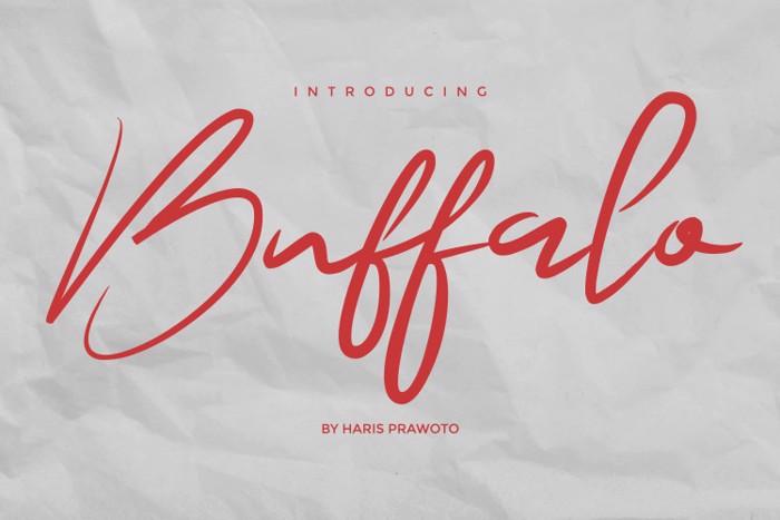 Buffalo Signature Font poster