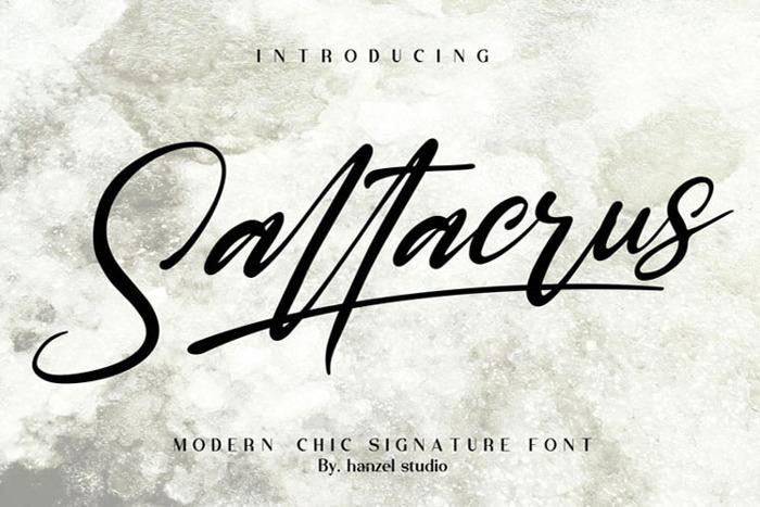 Saltacrus Font poster