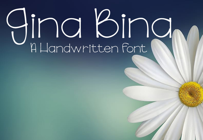 GinaBinaRegular Font poster