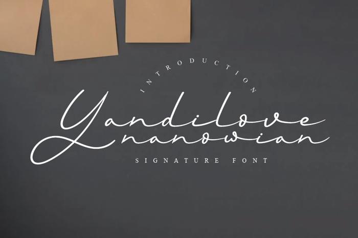 Yandilove Font poster