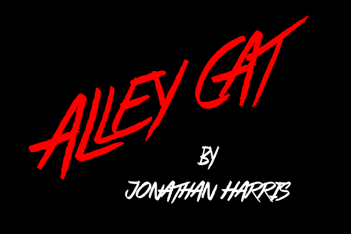 Alley Cat Font poster