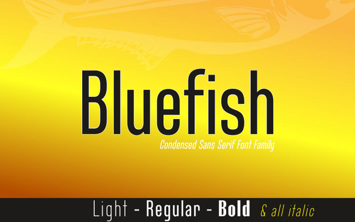 Bluefish Demo Font poster