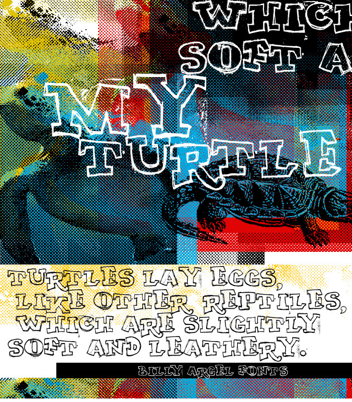 MY TURTLE Font poster