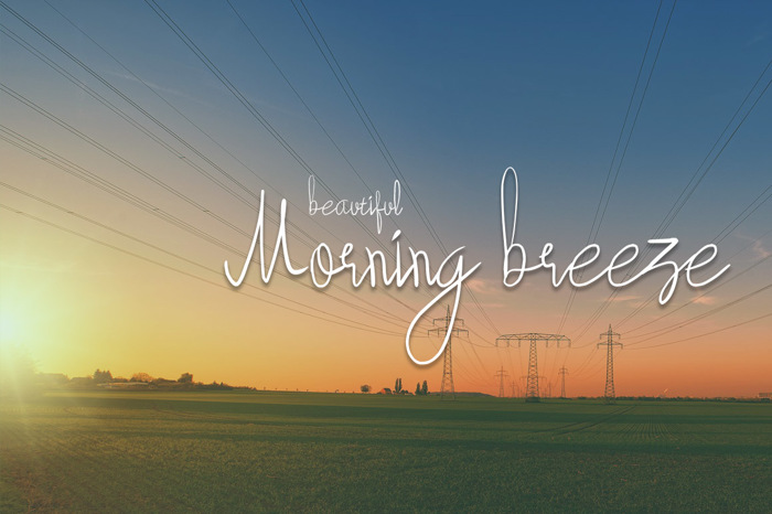beautyforest Font poster
