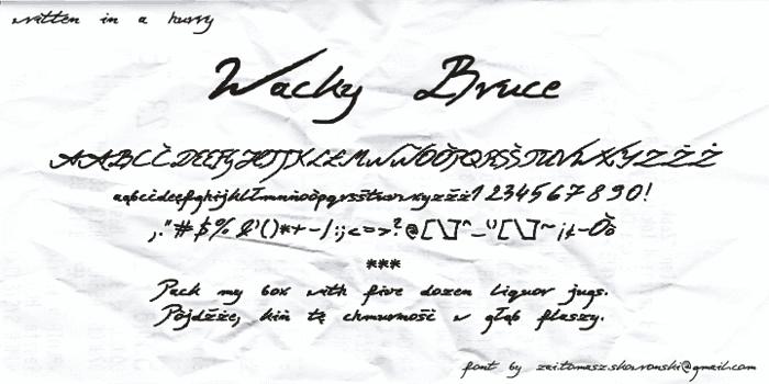 Wacky Bruce Font poster