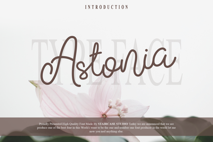 Astonia Font poster