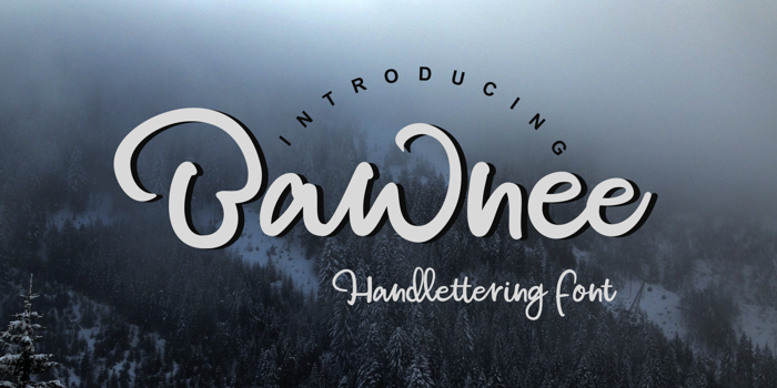 Bawnee Font poster