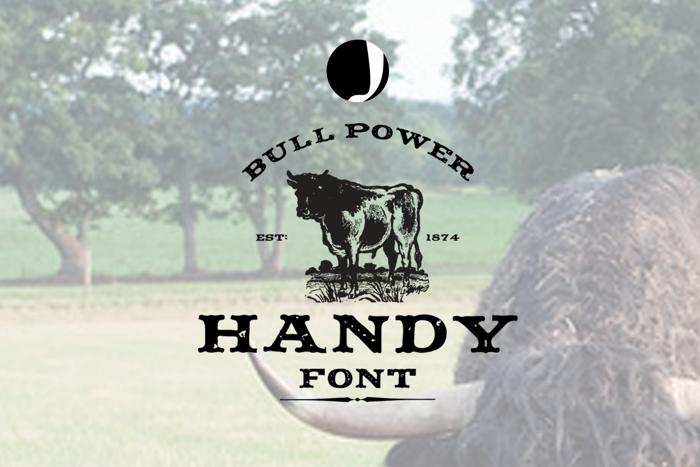 Handy Font poster
