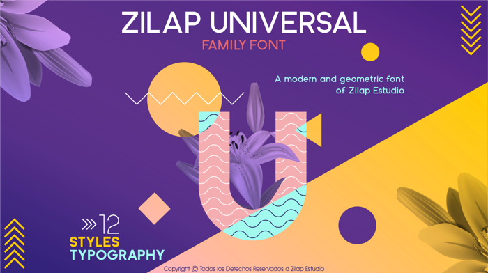Zilap Universal Font poster