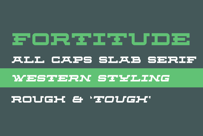 Fortitude Font poster