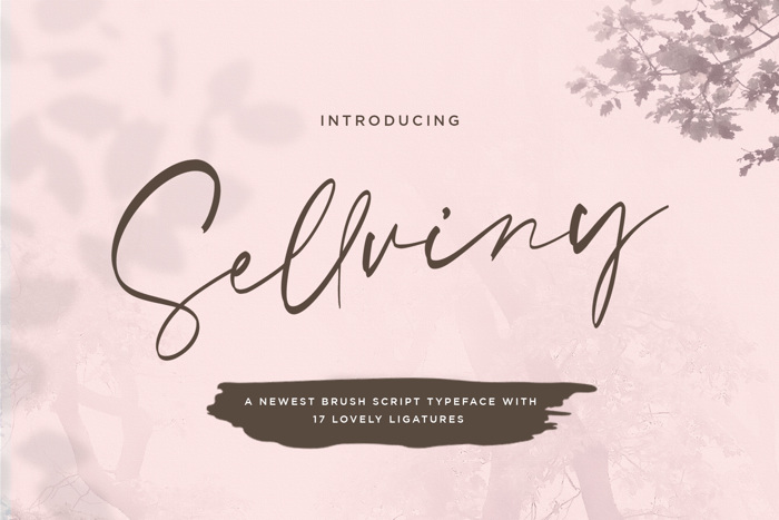 Sellviny Font poster