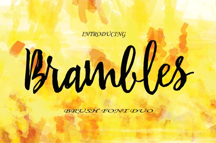 Brambles Font poster