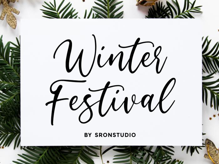 Winter Festival Font poster
