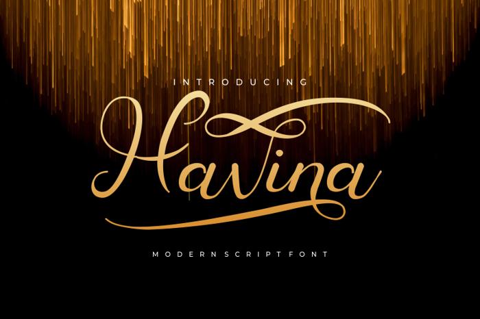 Havina Font poster