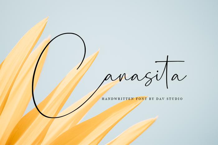 Canasita Font poster