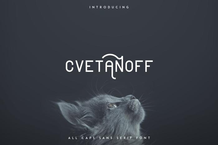 CVETANOFF SANS SERIF FONT poster