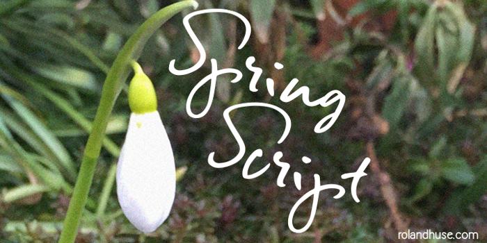Spring Script Font poster