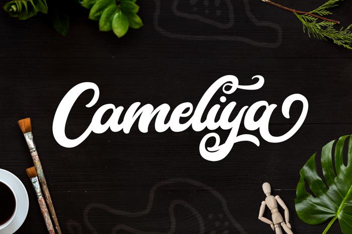 Cameliya Font poster