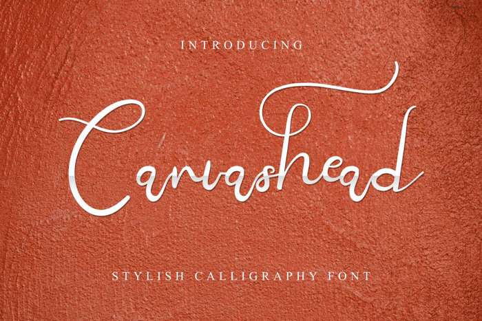 Canvashead Font poster