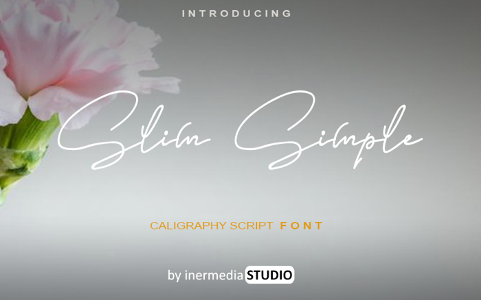 Slim Simple Font poster