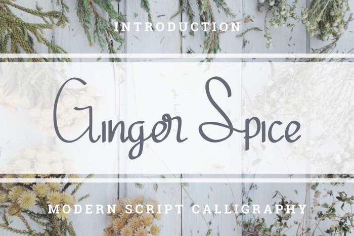 Ginger Spice Font poster