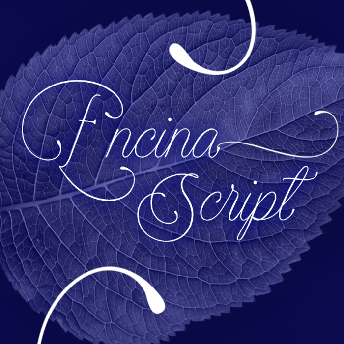 Encina Script Font poster
