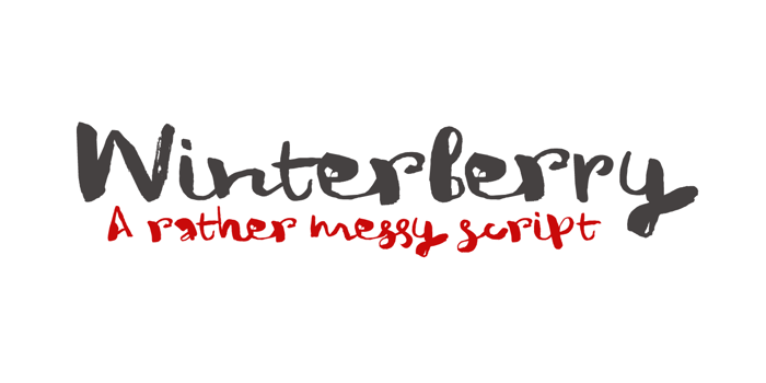 DK Winterberry Font poster