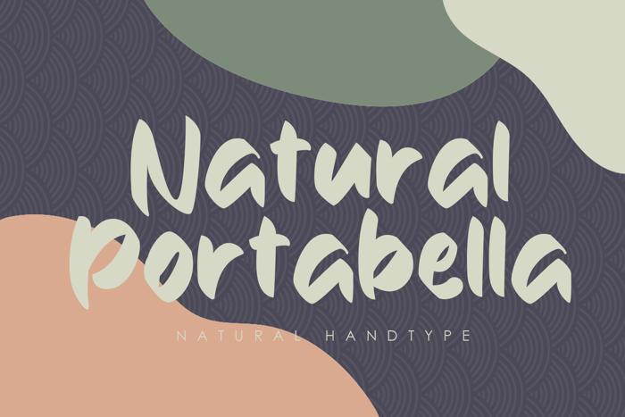 Natural Portabella Font poster
