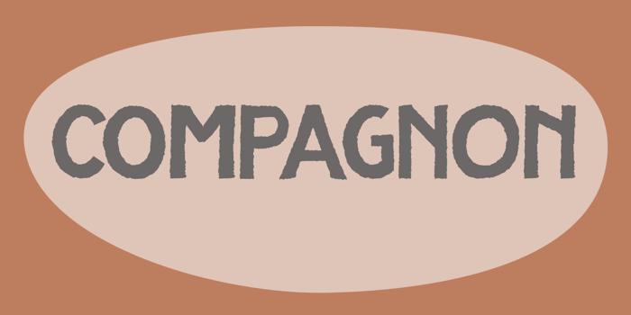 DK Compagnon poster