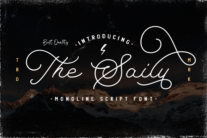 The Saily Font poster