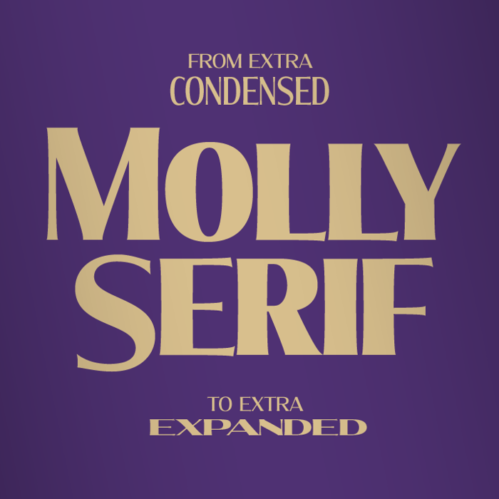 Molly Serif Expanded Font poster