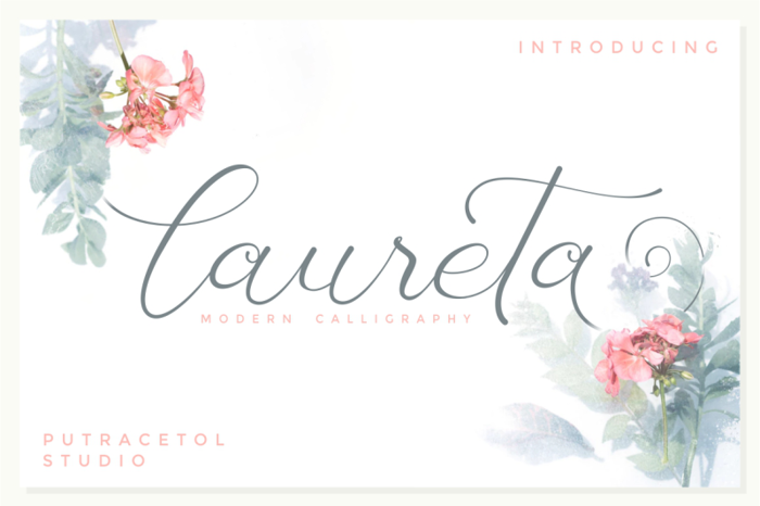 Laureta Font poster