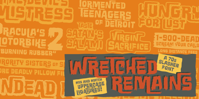 Wretched Remains BB Font poster