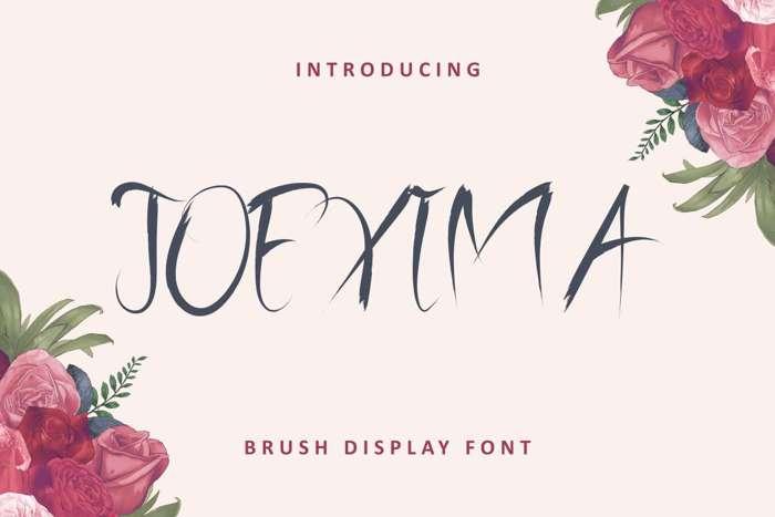 Joexima Font poster