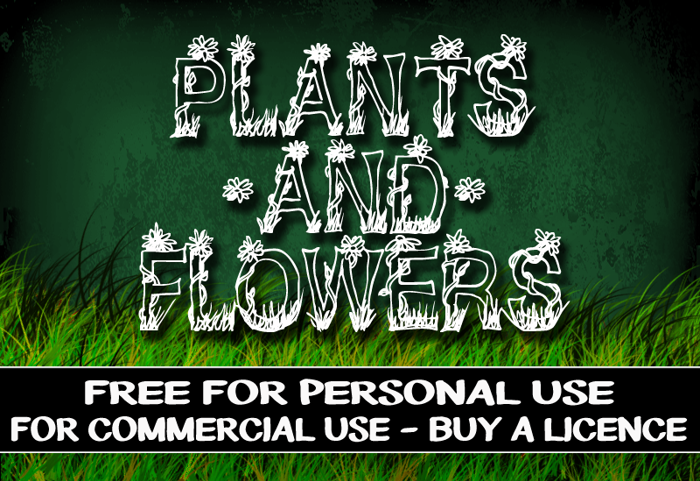 CF Plants and Flowers Font poster