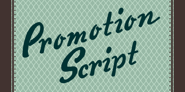Promotion Script Font poster