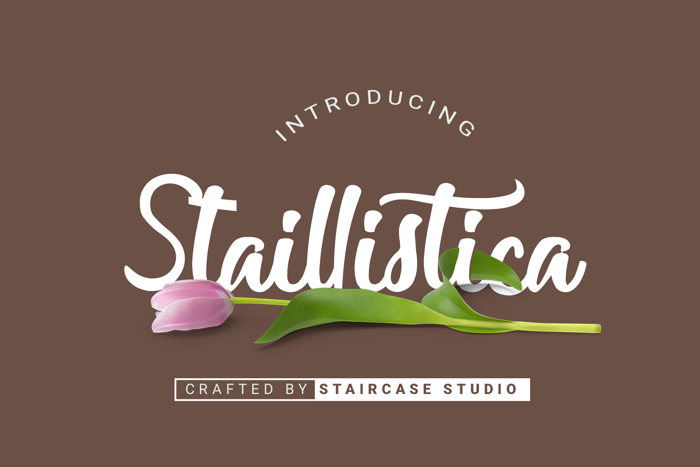 Staillistica Font poster
