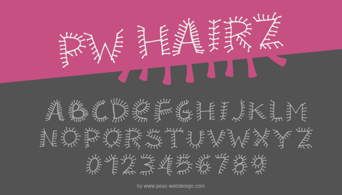 PWHairz Font poster