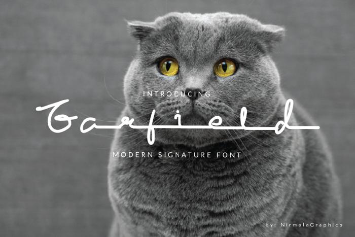 Garfield Font poster