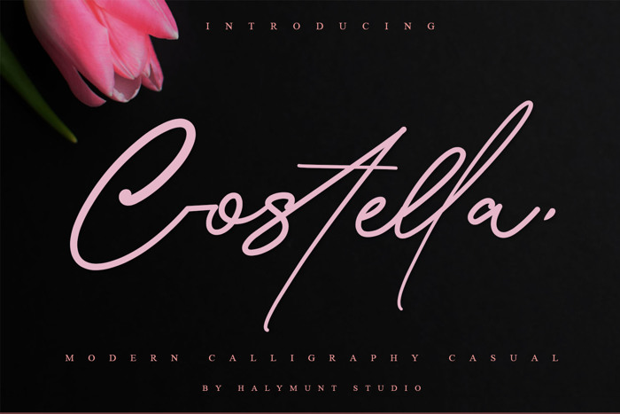 Costtella Signature Font poster