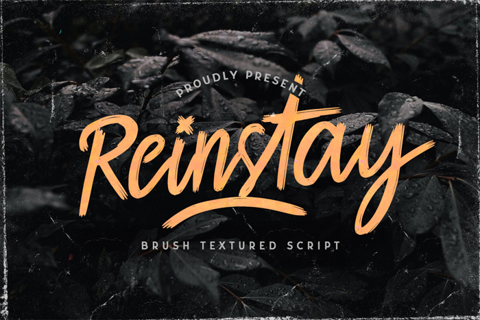 Reinstay Font poster