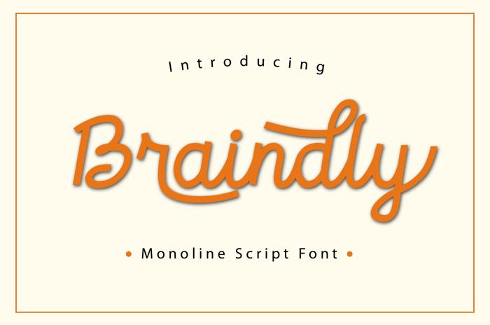 braindly Font poster