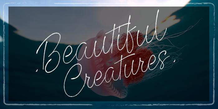 Beautiful Creatures Font poster