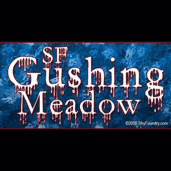 SF Gushing Meadow Font poster
