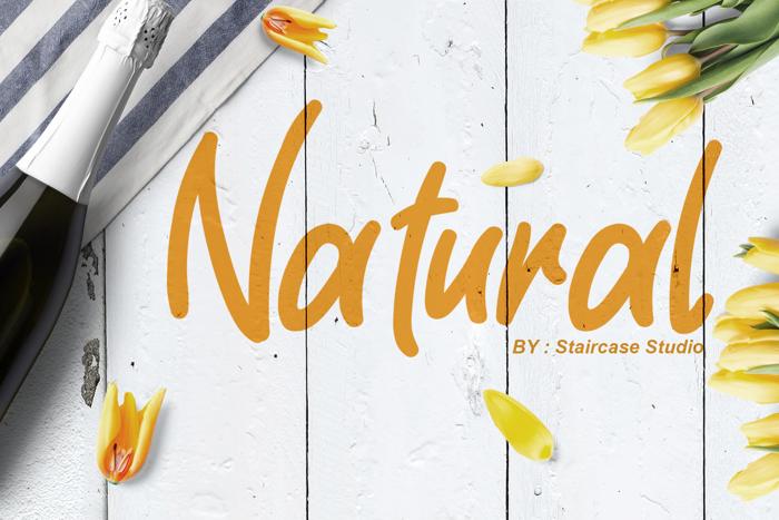 Natural Font poster