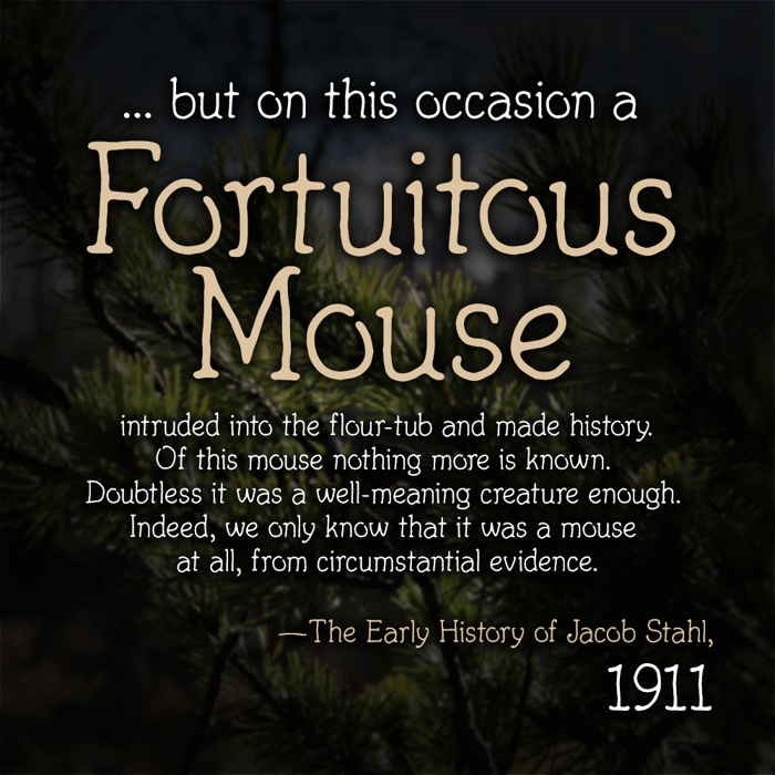 Fortuitous Mouse poster