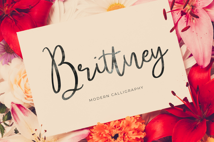 Brittney Font poster